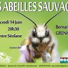 20170608_affiche_conf_abeilles
